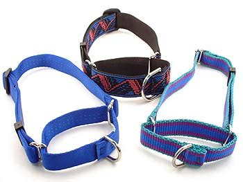 Handcraft Collars - martingale collar
