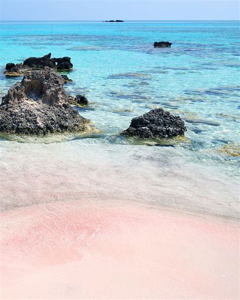 sand beaches 25 best ideas about pink sand on pink