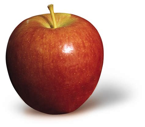 apple to apple apples varieties for all occasions louisiana kitchen