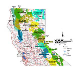 california national forest map california map