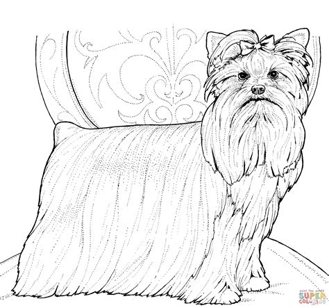 how to paper a yorkie puppy terrier or yorkie coloring page free printable coloring pages