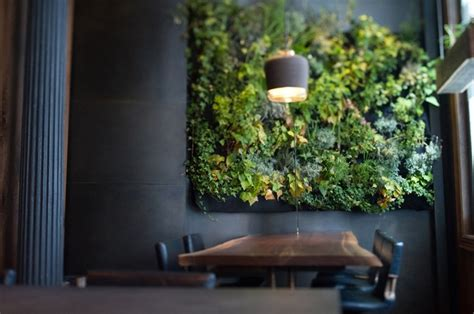 indoor herb garden wall herb wall atera restaurant nyc lk pinterest
