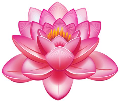 lotus flower png clipart clipart pinterest lotus