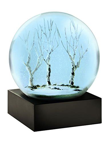 snow globe with fan giants snow globes new york giants snow globe giants