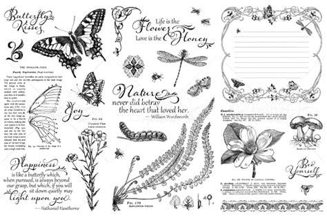 sketchbook nature photo scraps graphic 45 nature sketchbook pre order