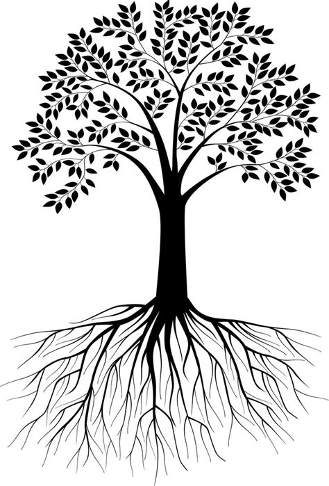 roots template black and white tree silhouette with roots vectorstock