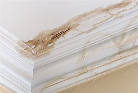Water Damage On Ceiling by How To Spot Water Damage In A Home Hie Consulting Engineers