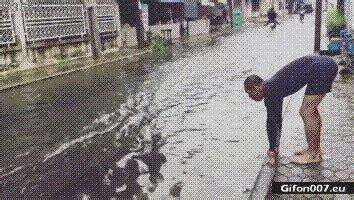 gif 815: funny video, water, swimming, street | gifon007.eu
