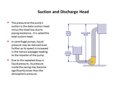 suction header design of pump hydraulic pumps ppt download