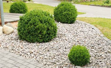 Pebbles And Rocks Garden Pebbles Adelaide Landscaping Pebble Supplies Adelaide Sa