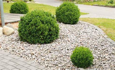 backyard pebble gravel pebbles adelaide landscaping pebble supplies adelaide sa