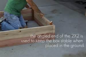 How To Make A Raised Garden Box - dandee how to build a raised garden box