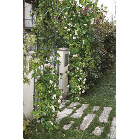 offerte piante da giardino offerte arco in ferro per ricanti