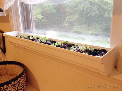 indoor windowsill planter box best 25 indoor window boxes ideas on pinterest indoor