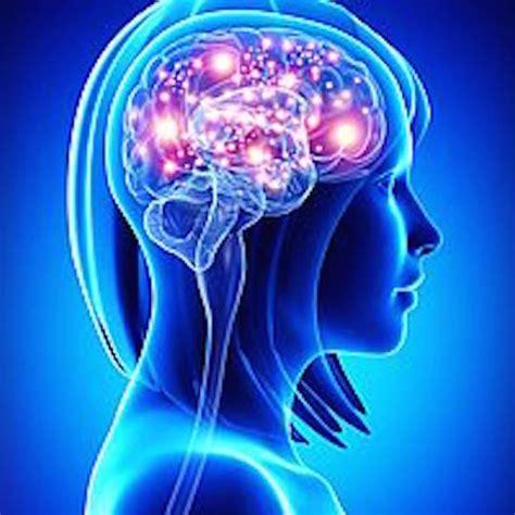 cerebro de pan la alimentar las neuronas archives mujer chic