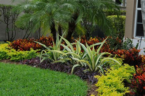 curb appeal in boca raton landscape design pamela crawford