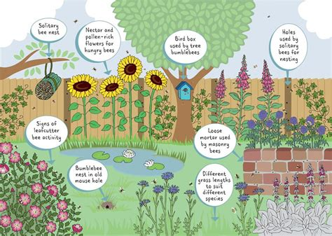 the bee friendly garden easy ways to help the bees and make your garden grow books about gardens week downloads