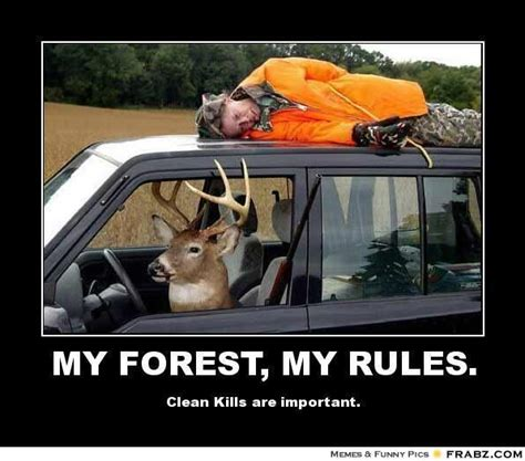 Funny Deer Memes - hunting meme my forest my rules deer hunting meme