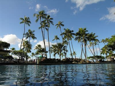 the hopeful traveler: finding the best deals to & from hawaii