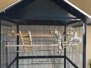 tres grande cage oiseaux a vendre oiseaux j annonce