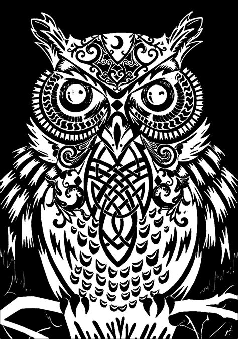 coloring pages with black background owl black background owls adult coloring pages