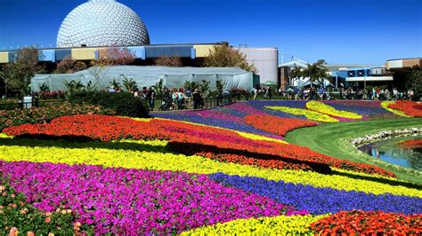 sneak peek at 25th epcot international flower garden