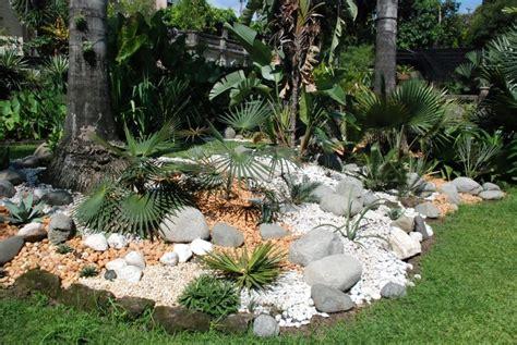 Incroyable Allee De Jardin En Pierre #4: jardin-rocaille-idée-conception-tropicale-plantes.jpg