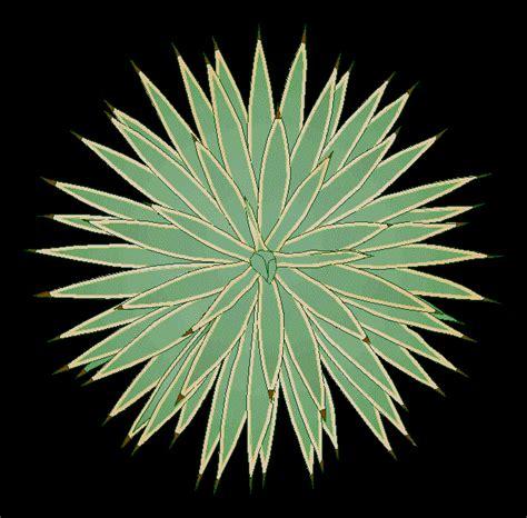 agave cactus plant  dwg block  autocad designs cad