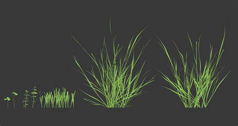 Zbrush Grass Tutorial | crafting environments in zbrush by tom nemeth page 2