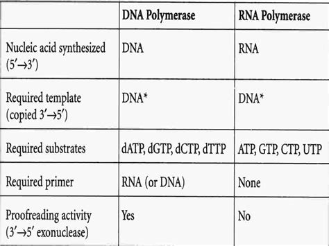 transcriptase synthesizes a dna molecule from an rna template mbbs medicine humanity august 2012