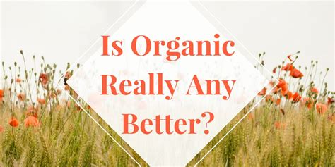 is organic really better is organic food really any better health