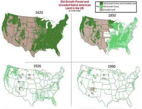 can american forests save the planet? rachel carson council
