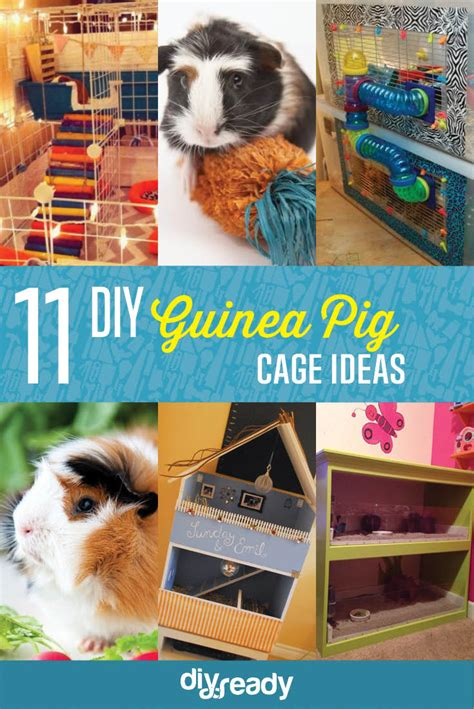 diy guinea pig house 11 diy guinea pig cage ideas diy ready