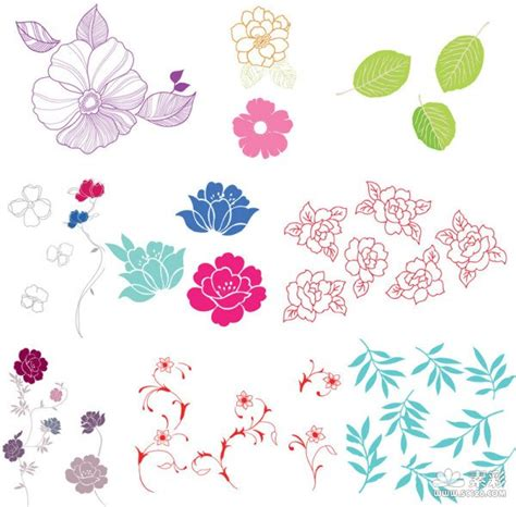 flower doodle ai 简单花朵花纹树叶矢量图案 矢量花卉花纹 矢量素材 素彩网