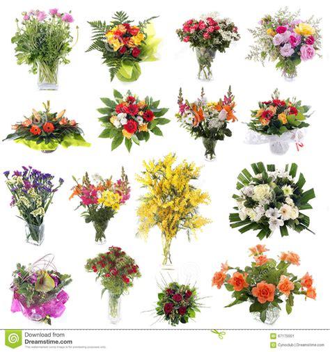 fiore di co nomi dei fiori di co nomi dei fiori mazzi di fiori nomi