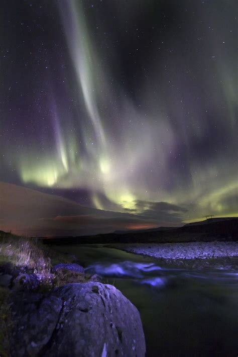 Northern Lights Distributors by 17 Best Images About Greenland And Iceland On