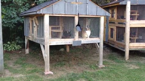 rabbit house how to build a rabbit hutch update youtube