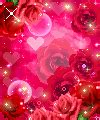 imagenes de rosas y corazones brillantes im 225 genes de rosas corazones brillantes