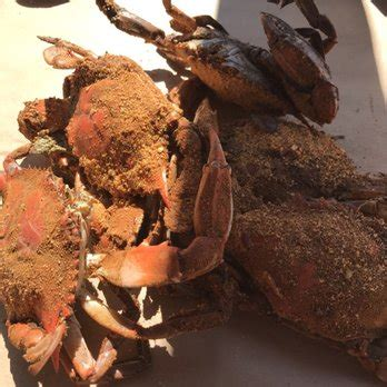sue island grill and crab house sue island grill crab house 21 photos 37 reviews seafood 900 baltimore yacht club rd