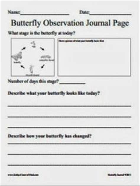 printable caterpillar observation journal coloring pages butterfly metamorphosis free coloring