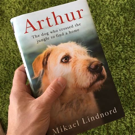 arthur the who crossed the jungle to find a home books le chien qui avait travers 233 la jungle pour trouver un foyer