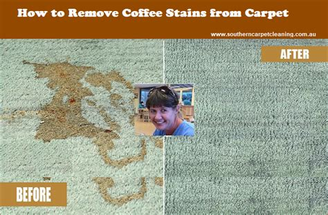 how to protect your couch from stains how to remove coffee stains from carpet southern carpet
