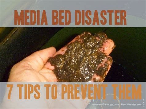 7 tips to prevent bed 7 tips to prevent disaster with an aquaponic media bed in