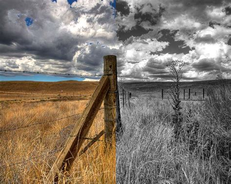 how to add color to a black and white photo how to colorize black and white photos add color to