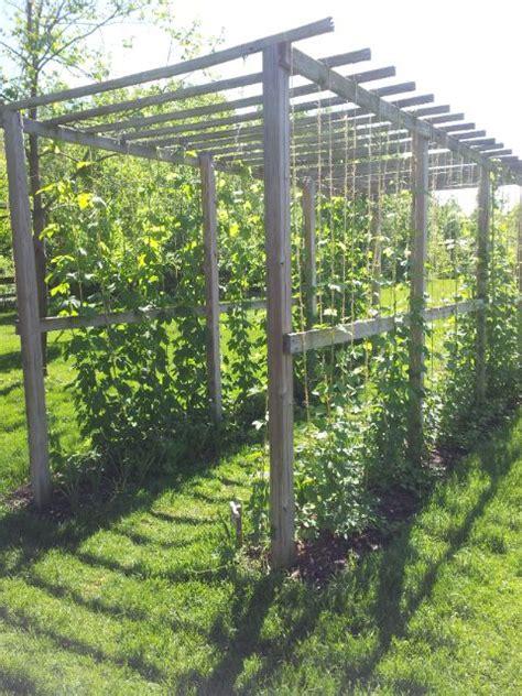 Garden Store Arbor Mi 7 Best Ideas About Hops On Gardens A