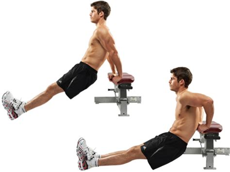 bench tricep gym inspiration com triceps bench dips
