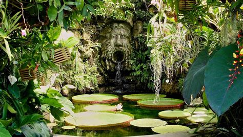 giardino la mortella botanischer garten la mortella auf ischia