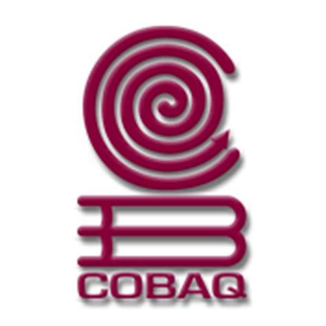 colegio de bachilleres del estadode quertaro cobaq plantel 18 mi escuela