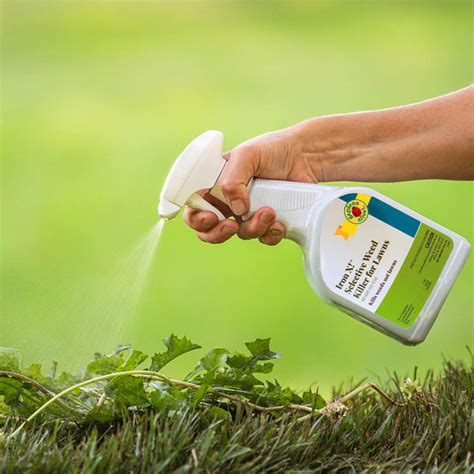 iron  selective weed killer  lawns  gardens alive
