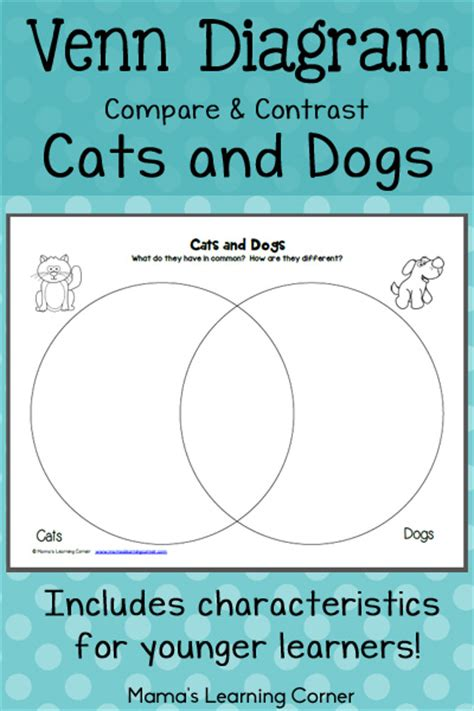 Compare And Contrast Essay Cats And Dogs by Cats And Dogs Venn Diagram Worksheet Mamas Learning Corner